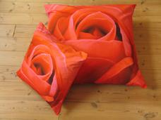 kussen roos